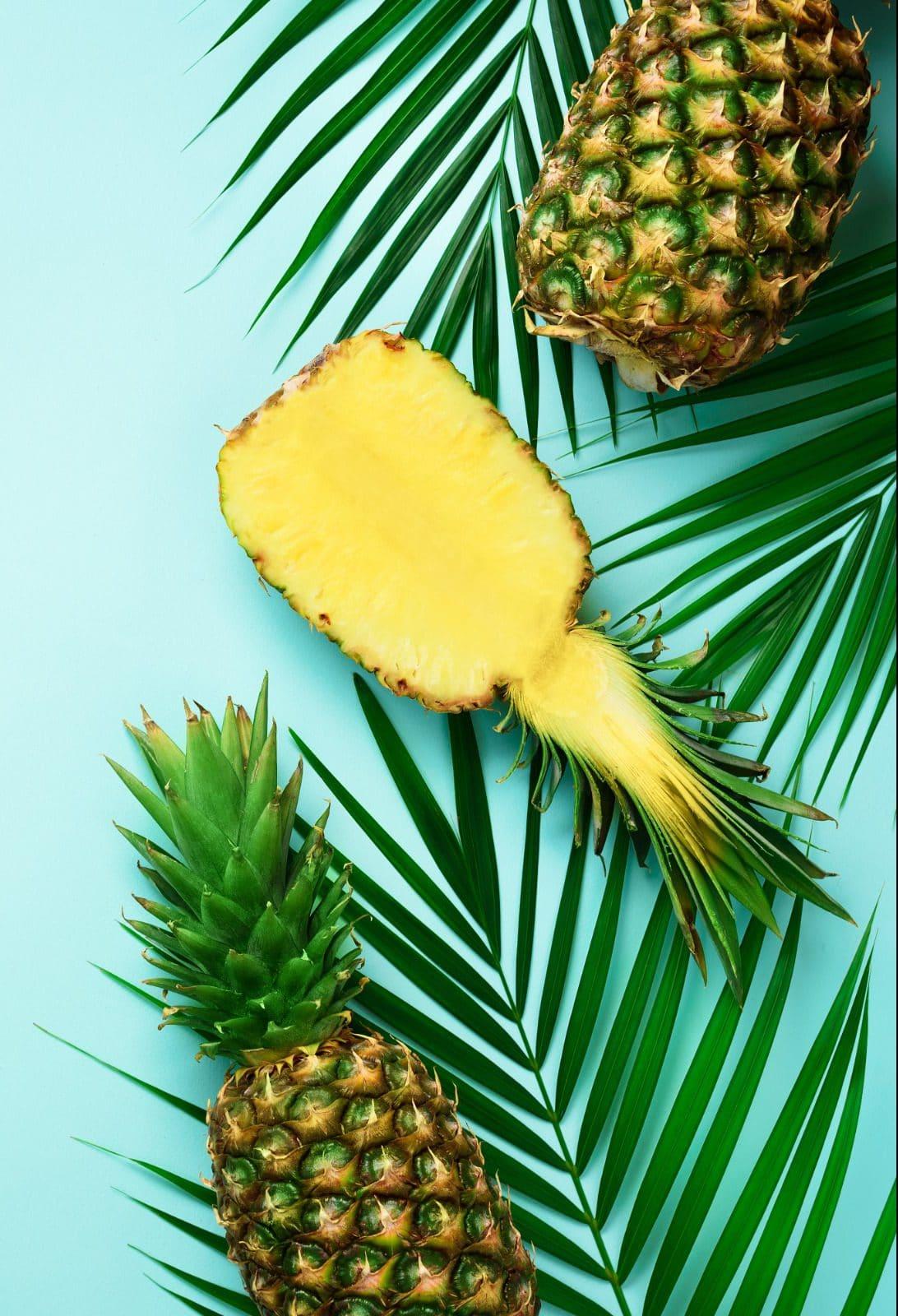 Ananas feuille palmier vacances.