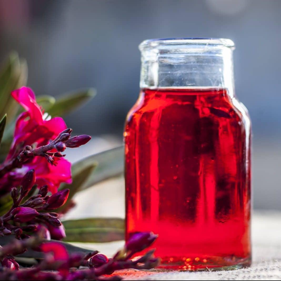Bissap, boisson africaine à l'hibiscus.